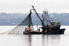 Commercial Fishing Insurance Cathlamet, Longview, WA